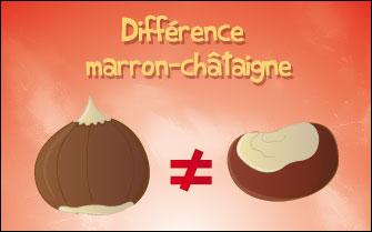 la ch226taigne et le marron blog de lapinou